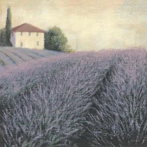 Lavender Hills Detail by James Wiens