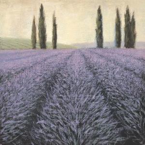 Lavender Horizon Detail by James Wiens