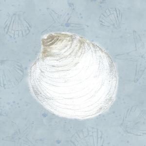 Serene Shells II by James Wiens