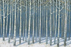 Shimmering Birches by James Wiens
