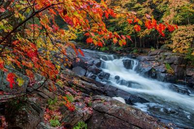 Unique Waterfall Framed by Red Leaves by JamesWheeler