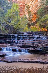 Utah, Zion National Park, Water Cascading Through Left Fork of North Creek by Jamie And Judy Wild