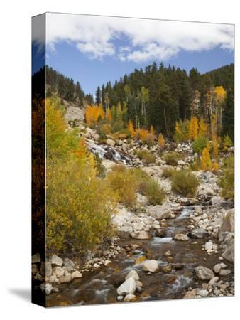 Alluvial Fan, Rocky Mountain National Park, Colorado, USA