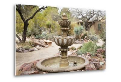 Cactus and Succulent Garden with Water Fountain, Tucson, Arizona, USA