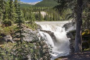 Canada, Alberta, Jasper National Park, Athabasca Falls by Jamie & Judy Wild