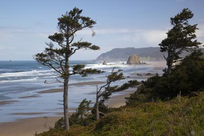 Cannon Beach and Haystack Rock, Oregon, USA by Jamie & Judy Wild