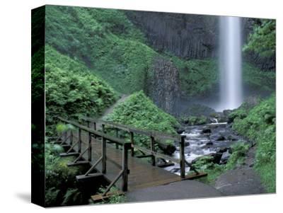 Falls from Foot Trail, Oregon Latourell Falls, Columbia River Gorge, Oregon, USA