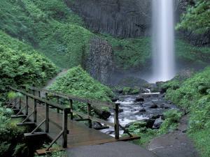Falls from Foot Trail, Oregon Latourell Falls, Columbia River Gorge, Oregon, USA by Jamie & Judy Wild