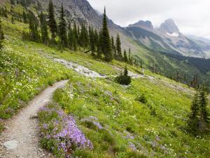 Highline Trail To Granite Park Chalet, Glacier National Park, Montana, USA by Jamie & Judy Wild