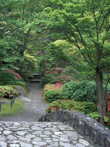 Japanese Garden Stone Bridge in Washington Park Arboretum, Seattle, Washington, USA by Jamie & Judy Wild