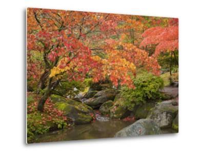 Japanese Garden, Washington Park Arboretum, Seattle, Washington, Usa