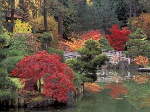 Kiri Pond and Bridge in a Japanese Garden, Spokane, Washington, USA by Jamie & Judy Wild