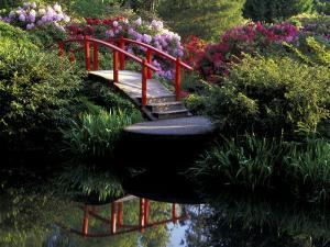 Moon Bridge and Pond in a Japanese Garden, Seattle, Washington, USA by Jamie & Judy Wild