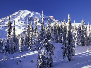 Mount Rainier after a Winter Storm, Mt. Rainier National Park, Washington, USA by Jamie & Judy Wild