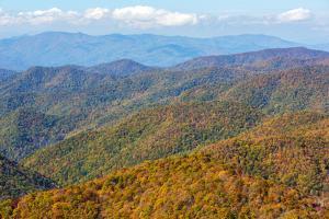 North Carolina, Blue Ridge Parkway by Jamie & Judy Wild