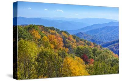 North Carolina, Great Smoky Mountains NP, View from Newfound Gap Road