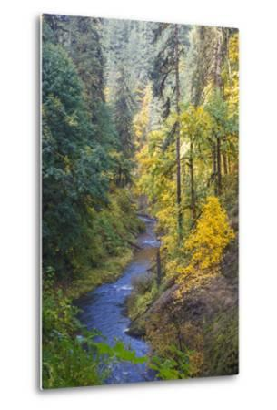 North Fork Silver Creek, Silver Falls State Park, Oregon, USA