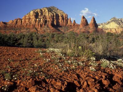 Red Rock Country, Sedona, Arizona, USA by Jamie & Judy Wild