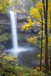 South Falls, Silver Falls State Park, Oregon, USA by Jamie & Judy Wild