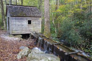 Tennessee, Great Smoky Mountains NP, Tub Mill and Millrace in a Forest by Jamie & Judy Wild