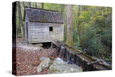 Tennessee, Great Smoky Mountains NP, Tub Mill and Millrace in a Forest