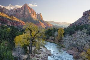 USA, Utah, Zion National Park, Virgin River and the Watchman by Jamie & Judy Wild