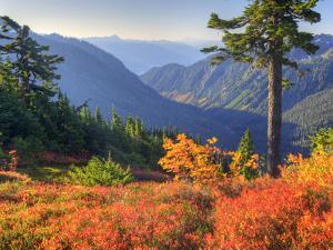 View from Kulshan Ridge, Heather Meadows Recreation Area, Washington, Usa by Jamie & Judy Wild