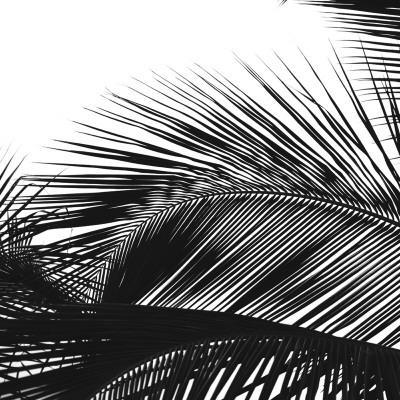 Palms 13 (detail)