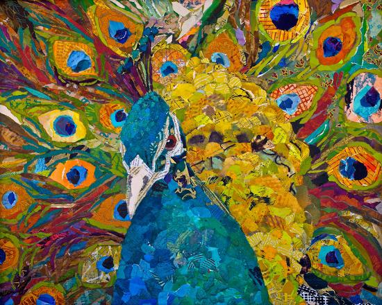 jamis-peacock