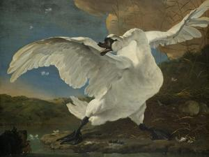 The Threatened Swan, c.1650 by Jan Asselyn