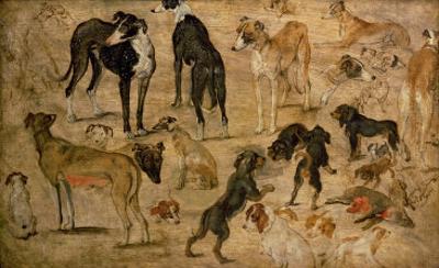 Study of Hounds, 1616 by Jan Brueghel the Elder