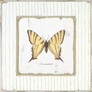 Garden Swallowtail by Jan Cooley