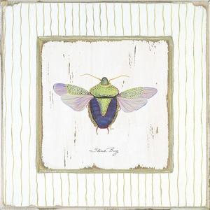 Stink Bug by Jan Cooley