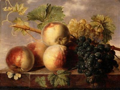 Peaches and Grapes with a Cabbage White on a Marble Ledge