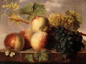 Peaches and Grapes with a Cabbage White on a Marble Ledge by Jan Frans Dael