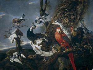 Bird Concert, 1661 by Jan Fyt