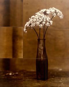 Night Flower by Jan Gauthier