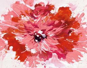 Color in Bloom by Jan Griggs