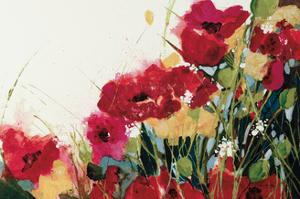 Poppies and Flowers on White by Jan Griggs