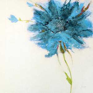 Turquoise Daisy on White by Jan Griggs