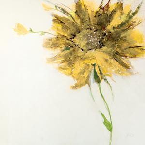Yellow Daisy on White by Jan Griggs