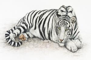 Siberian Tiger by Jan Henderson