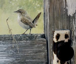 House Wren by Jan Martin McGuire