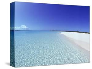 Bahamian Shoreline by Jan & Rhys Hanna