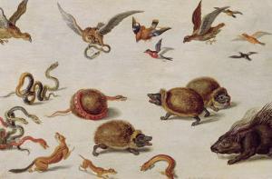 The Enemies of Snakes by Jan van Kessel