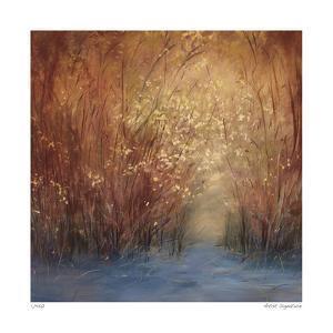 October Light by Jan Wagstaff