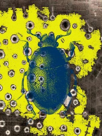 Blue Bug by Jan Weiss