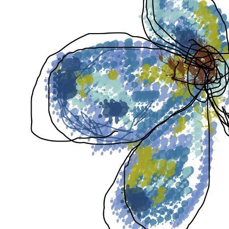 jan-weiss-blue-petals