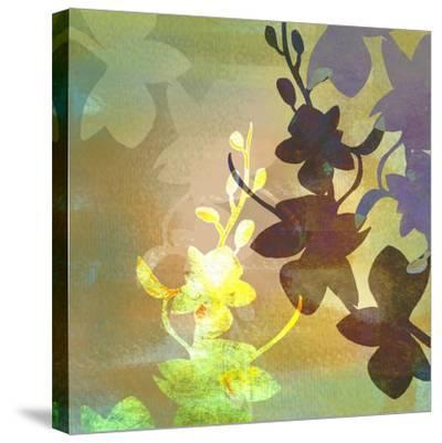 Orchid Shadows III