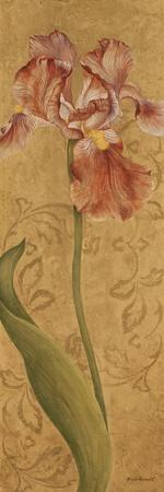 Iris Elegance I